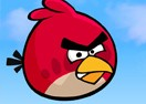 Angry Bird VS Zombies - Doctor Version
